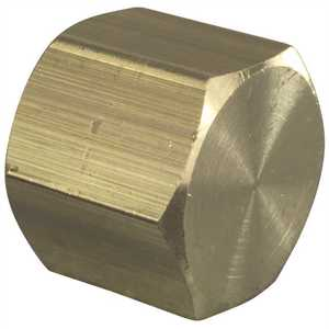 Sioux Chief 930-492001 1/2 in. Brass FPT Cap