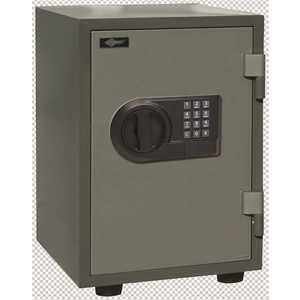 "AMSEC FS149E5LP E5LP ELEC LOCK SAGE 14""X 9"" Black, Gray, Sage"