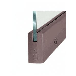 "Black Bronze Dry Glazed Frameless Glass 3'-0"" P-Style Single Door Only Kit - with Lock"