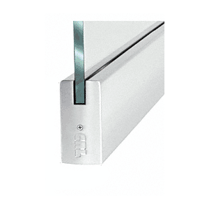 "CRL P4PS12S Dry Glazed Frameless Glass 3'-0"" P-Style Polished Stainless Single Door Only Kit - without Lock"