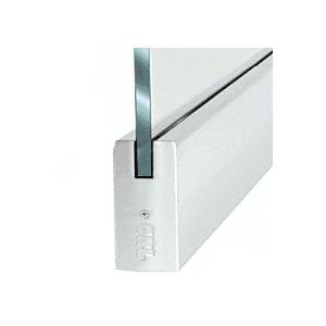 "Dry Glazed Frameless Glass 3'-0"" P-Style Satin Anodized Single Door Only Kit - without Lock"