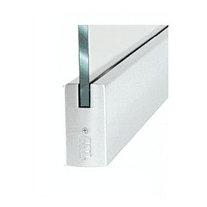 "Dry Glazed Frameless Glass 3'-0"" P-Style Satin Anodized Single Door Complete Entrance Kit - without Lock"