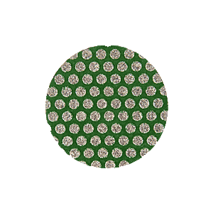 "3M ZR0260 2"" 60 Grit Roloc Disc - Green"