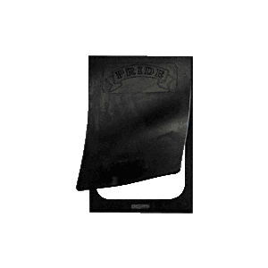 CRL SF300 Replacement Magnetic U-Frame and Rubber Flap for Small Pet Doors