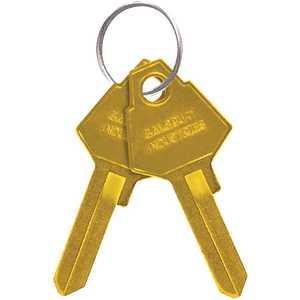 Salsbury Industries 2299 Key Blanks for Aluminum Mailbox Standard Locks - pack of 50