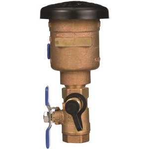 Zurn 34-720A 3/4 in. Brass FIP x FIP Pressure Vacuum Breaker Backflow Preventer Check Valve
