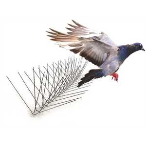 Bird-X STS-50 50 ft. Stainless Steel Bird Spikes Pigeons Starling Blackbirds Seagulls 6 in. Coverage