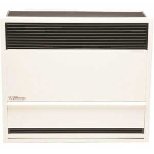 Williams 3003821 30,000 BTUH 66% AFUE Direct-Vent Propane Gas Gravity Wall Heater