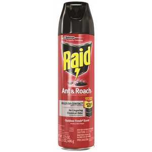 RAID 617736 17.5 oz. Ready-to-Use Ant and Roach Killer
