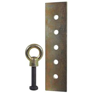 AES Industries™ 4453 Eye Bolt & Pull Plate